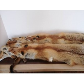 Beautiful natural colour Red Wild Fox furs.